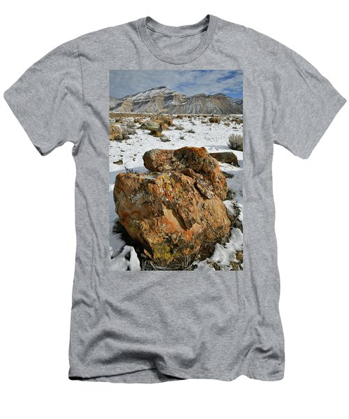 Ornate Colorful Boulders In The Book Cliffs Men's T-Shirt (Athletic Fit)