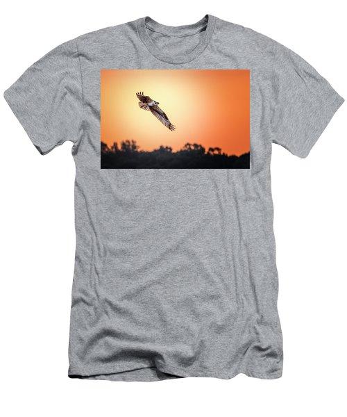 Osprey At Sunrise Men's T-Shirt (Athletic Fit)