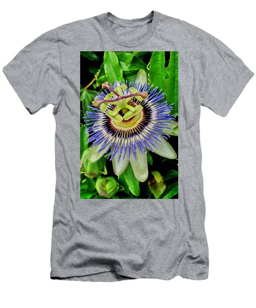 Passion Flower Bee Delight Men's T-Shirt (Athletic Fit)
