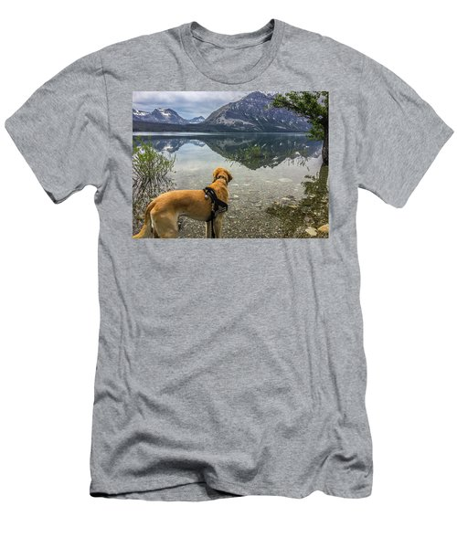 Men's T-Shirt (Athletic Fit) featuring the photograph Photo Dog Jackson At Glacier by Matthew Irvin