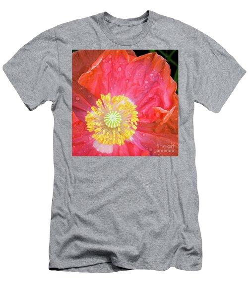 Poppy Closeup Men's T-Shirt (Athletic Fit)
