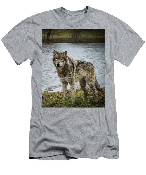 Posing By The Water Men's T-Shirt (Athletic Fit)