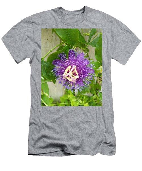 Purple Passionflower Men's T-Shirt (Athletic Fit)