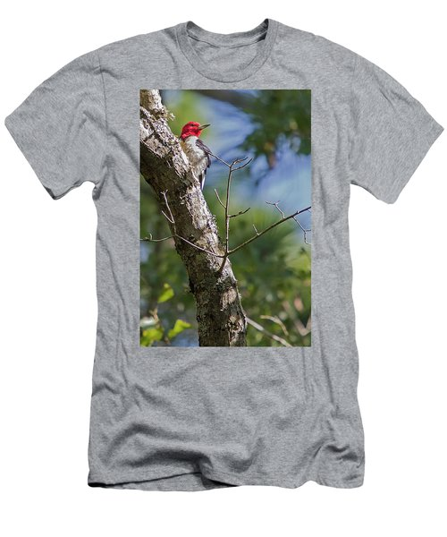 Redhead Woodpecker Men's T-Shirt (Athletic Fit)