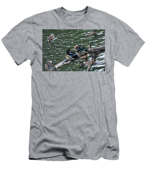 Resting Ducks Men's T-Shirt (Athletic Fit)