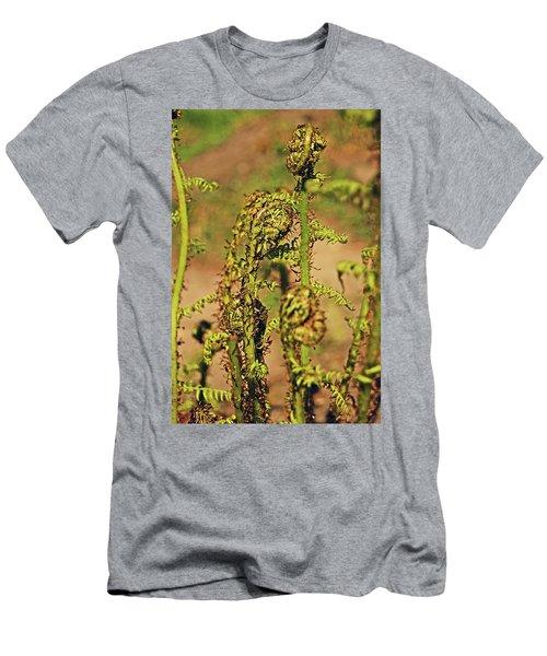 Rivington Terraced Gardens. Fern Frond. Men's T-Shirt (Athletic Fit)