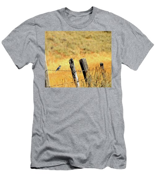 Rocky Mountain Blue Bird Men's T-Shirt (Athletic Fit)