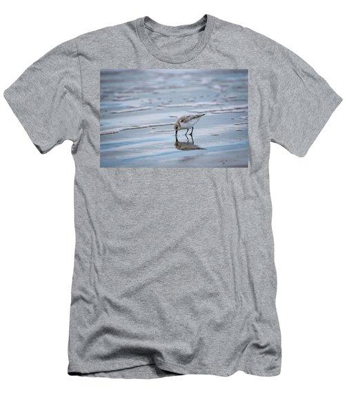 Sanderling Foraging Men's T-Shirt (Athletic Fit)