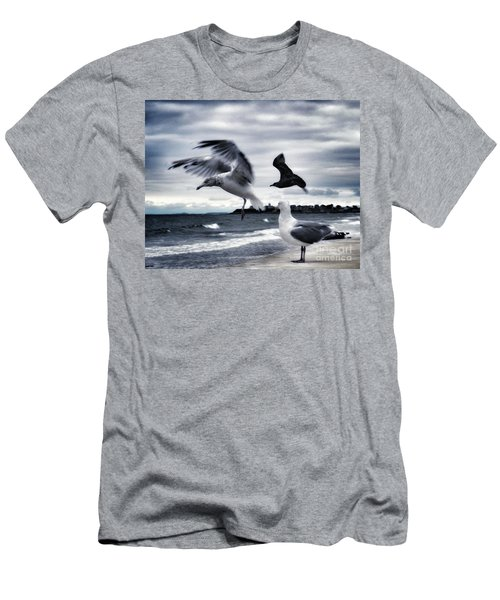 Seagulls Men's T-Shirt (Athletic Fit)