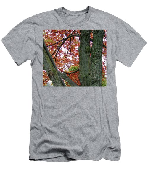 Seeing Autumn Men's T-Shirt (Athletic Fit)