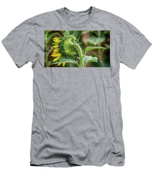Shy Sunflower  Men's T-Shirt (Athletic Fit)