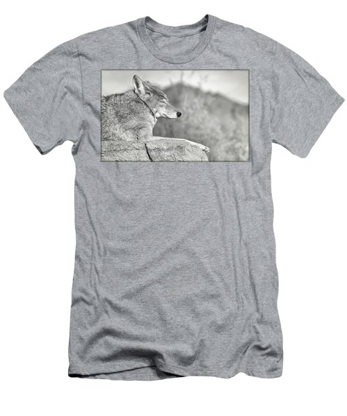 Sleepy Coyote Men's T-Shirt (Athletic Fit)