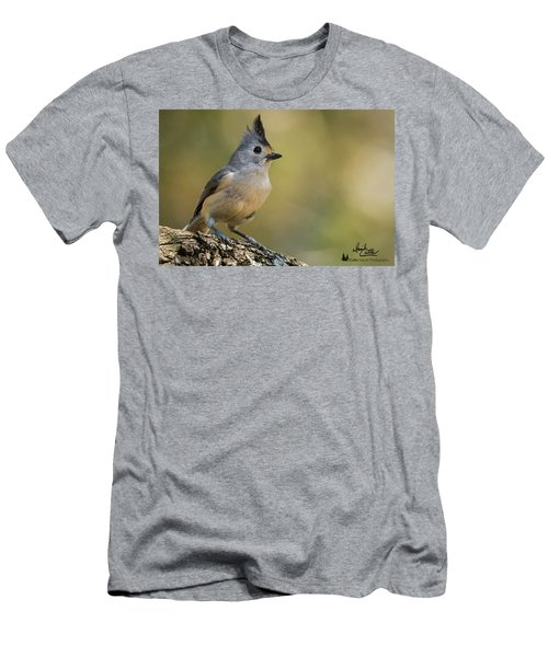 Small Titmouse Men's T-Shirt (Athletic Fit)