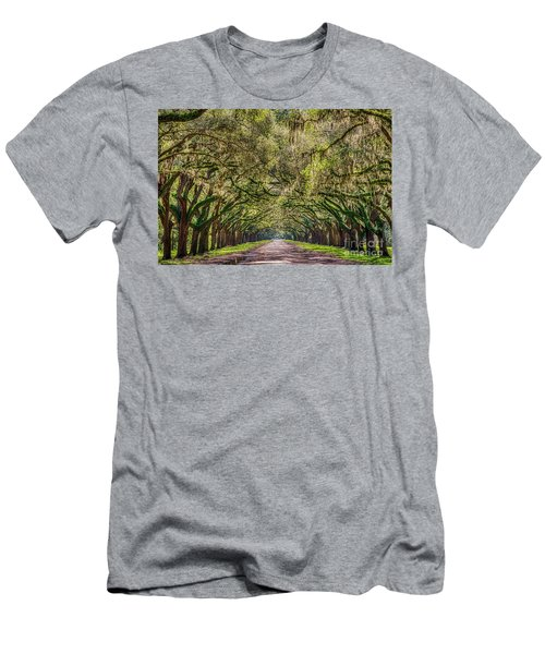 Spanish Moss Tree Tunnel Men's T-Shirt (Athletic Fit)