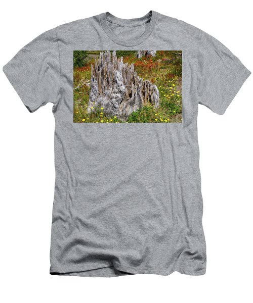 Stumps Of Trees Shattered In The 1980 Eruption Men's T-Shirt (Athletic Fit)