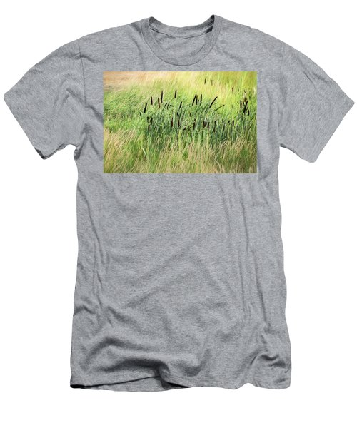 Summer Cattails In Field Of Grass - Men's T-Shirt (Athletic Fit)