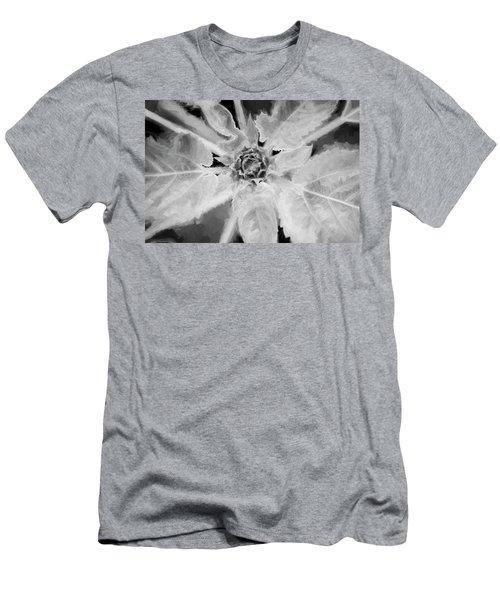 Sunflowers  Helianthus 026 Men's T-Shirt (Athletic Fit)