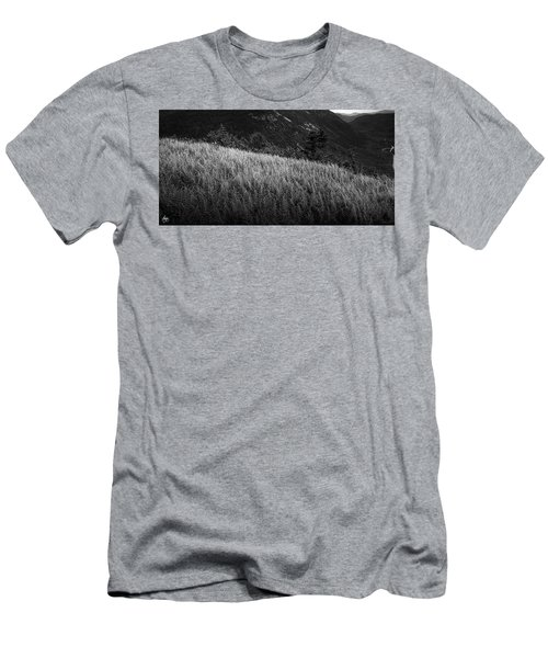 Men's T-Shirt (Athletic Fit) featuring the photograph Sunlight On Ferns, Mount Willard by Wayne King
