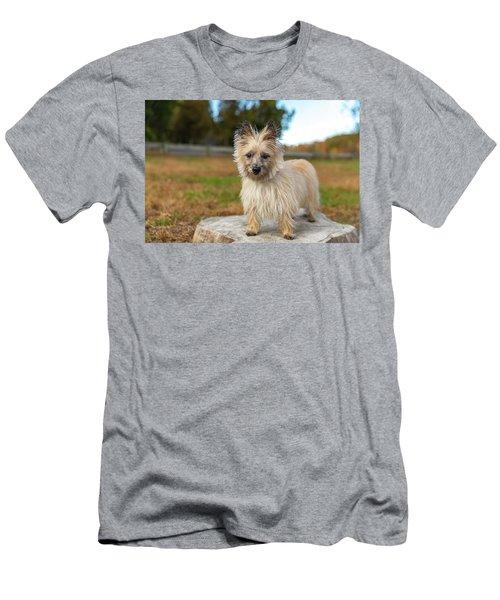 Tasha Men's T-Shirt (Athletic Fit)