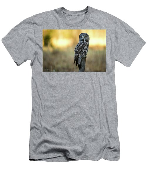 The Great Gray Owl In The Morning Men's T-Shirt (Athletic Fit)
