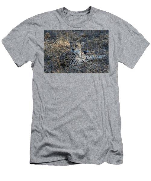 Cheetah In Repose Men's T-Shirt (Athletic Fit)