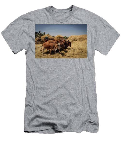 Threshing Men's T-Shirt (Athletic Fit)