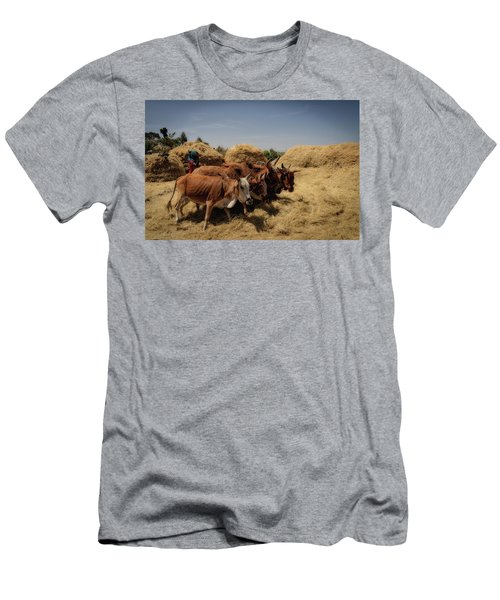 Threshing Men's T-Shirt (Athletic Fit)