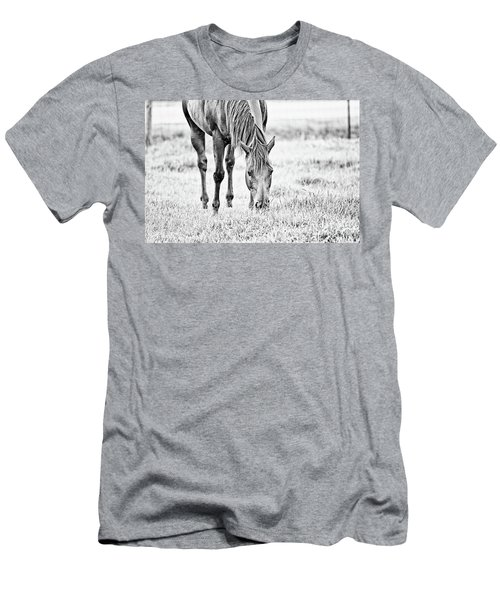 Tigerlily - Bw Men's T-Shirt (Athletic Fit)