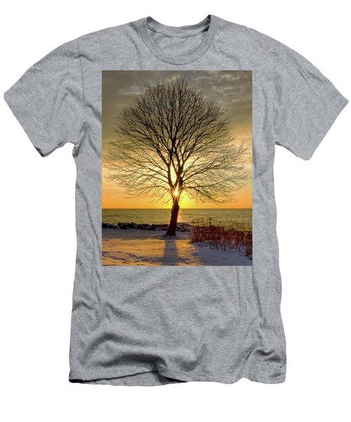 Tree Framed Sunrise New Hampshire Men's T-Shirt (Athletic Fit)