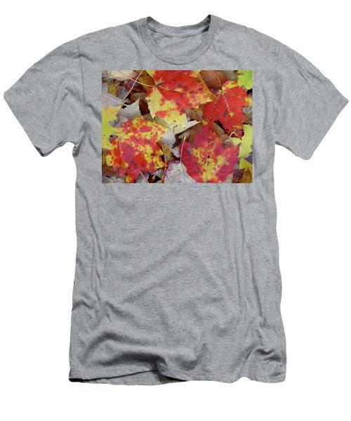 True Autumn Colors Men's T-Shirt (Athletic Fit)