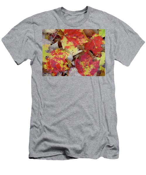 True Autumn Colors Men's T-Shirt (Athletic Fit)