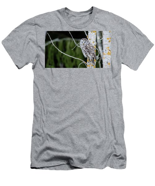 Ural Owl Perching On An Aspen Twig Men's T-Shirt (Athletic Fit)
