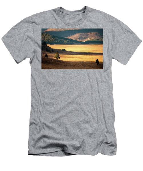 Valles Caldera Detail Men's T-Shirt (Athletic Fit)