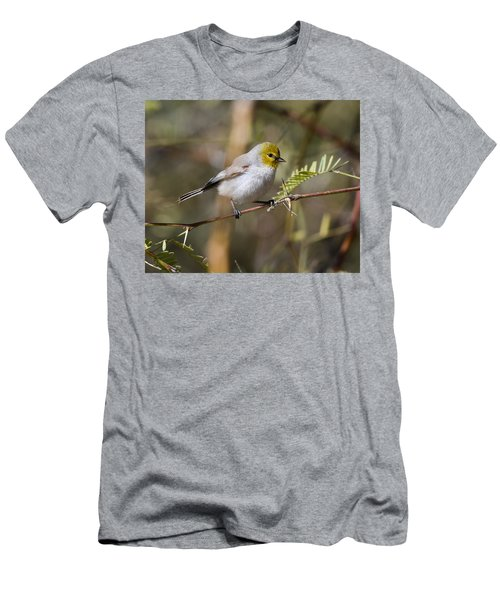 Verdin Men's T-Shirt (Athletic Fit)