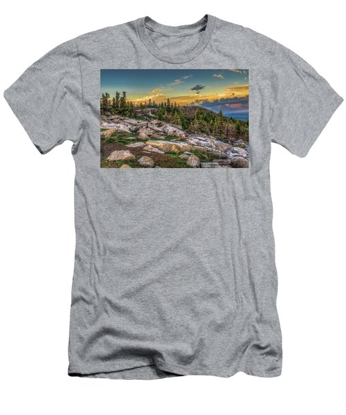 View From Dolly Sods 4714 Men's T-Shirt (Athletic Fit)