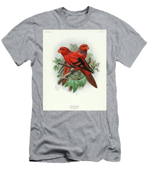 Violet-necked Lories Men's T-Shirt (Athletic Fit)
