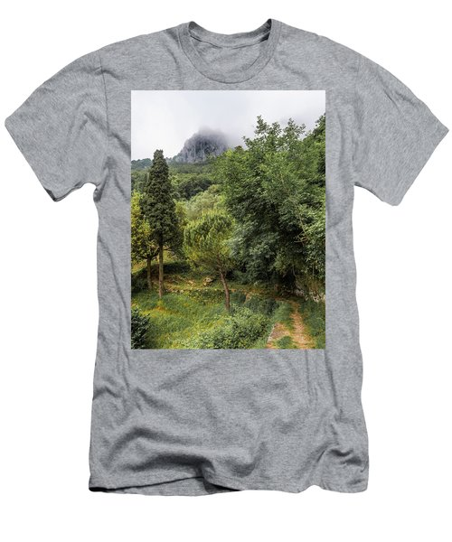 Walking Along The Mountain Path Men's T-Shirt (Athletic Fit)