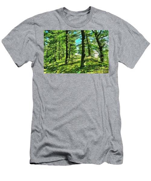 Walking Through. A Sunlit Forest Men's T-Shirt (Athletic Fit)