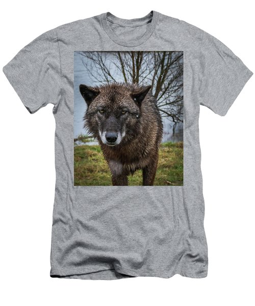 Wet Wolf Men's T-Shirt (Athletic Fit)