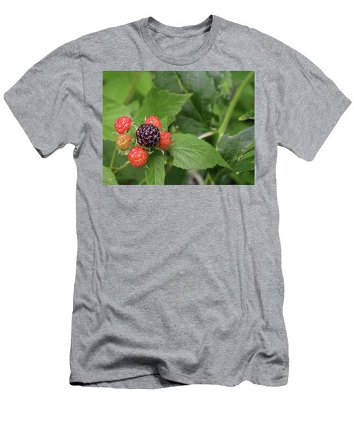 Wildly Fruity Men's T-Shirt (Athletic Fit)