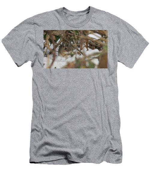 Wood Mouse Men's T-Shirt (Athletic Fit)