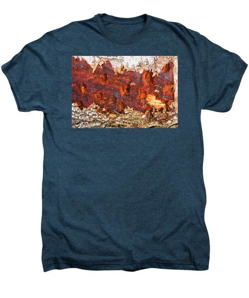 Tree Closeup - Wood Texture Men's Premium T-Shirt