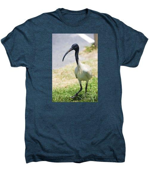 Carpark Ibis Men's Premium T-Shirt