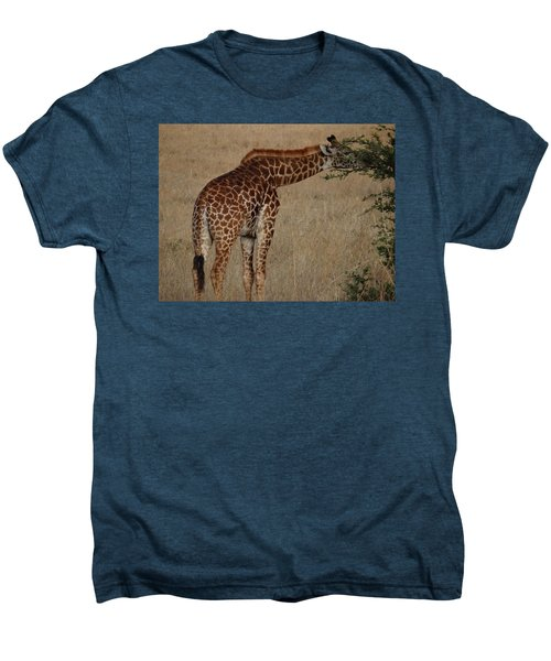 Giraffes Eating - Side View Men's Premium T-Shirt