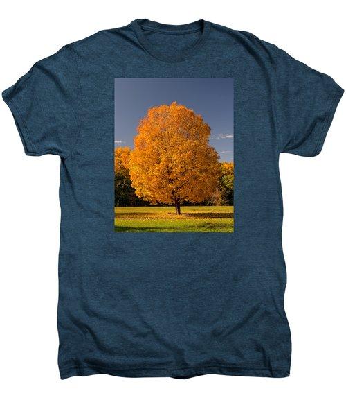 Golden Tree Of Autumn Men's Premium T-Shirt