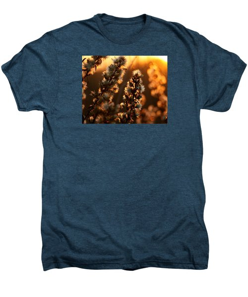 Goldenrod At Sunset Men's Premium T-Shirt