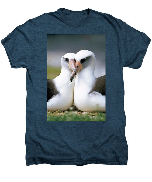 Laysan Albatross Phoebastria Men's Premium T-Shirt by Tui De Roy