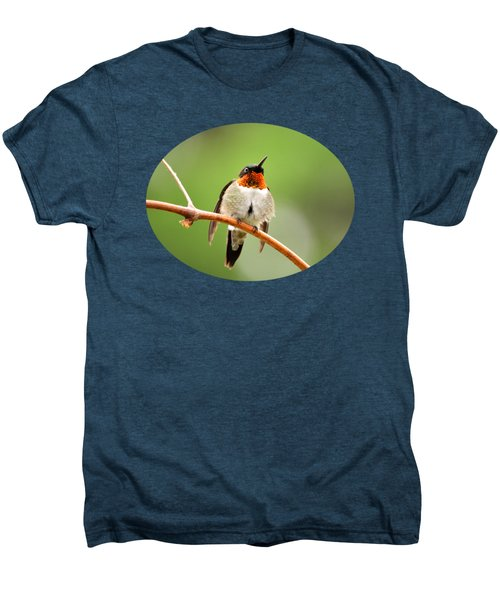 Male Ruby-throated Hummingbird Men's Premium T-Shirt