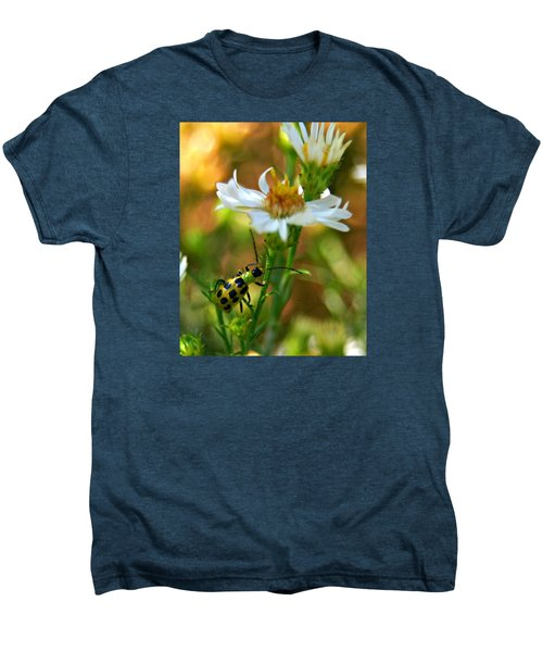 Spotted Cucumber Beetle On Aster Men's Premium T-Shirt