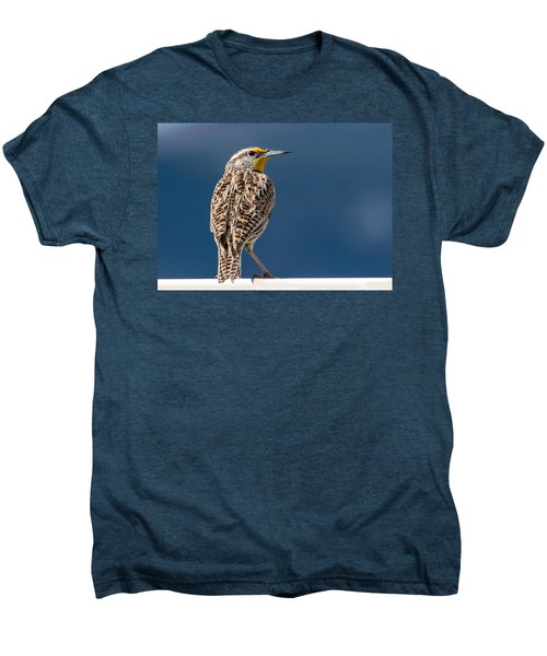 Western Meadowlark Men's Premium T-Shirt by Dawn Key
